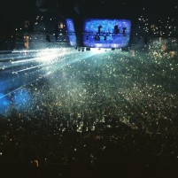 MSG New Years